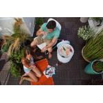 ΣΚΑΜΠΟ-ΨΥΓΕΙΟ COOL STOOL 39L KETER Έπιπλα Κήπου